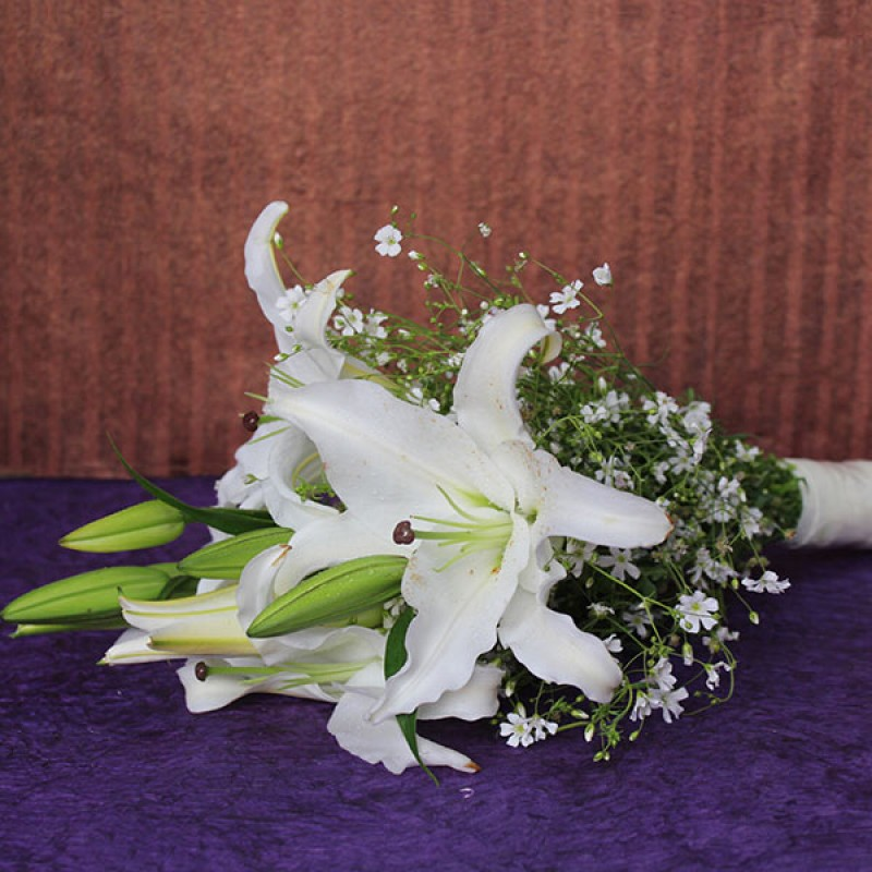 White Lily Surprise