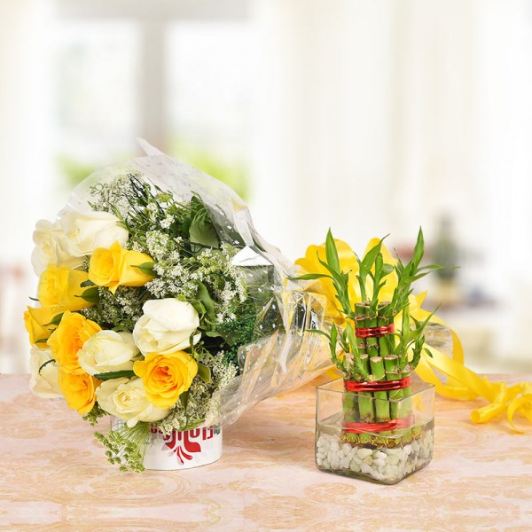 6 Yellow Roses and 6 White Roses with 2 layer Lucky Bamboo Plant