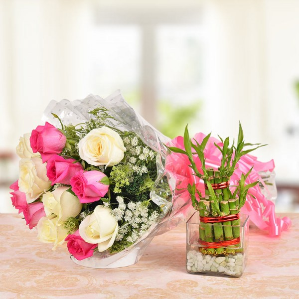 6 Pink Roses and 6 White Roses with 2 layer Lucky Bamboo Plant