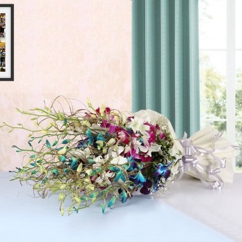 15 Assorted Orchids (White,Blue,Purple)