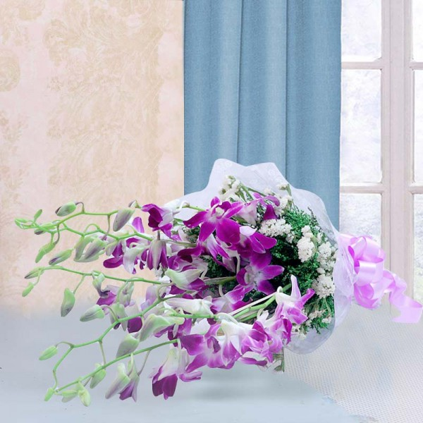 6 Purple Orchids wrapped in Cellophane packing