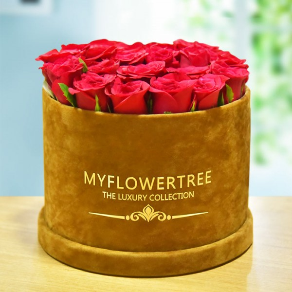 40 Red Roses in a Brown Signature Velvet Box