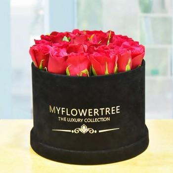 40 Red Roses in a Black Signature Velvet Box
