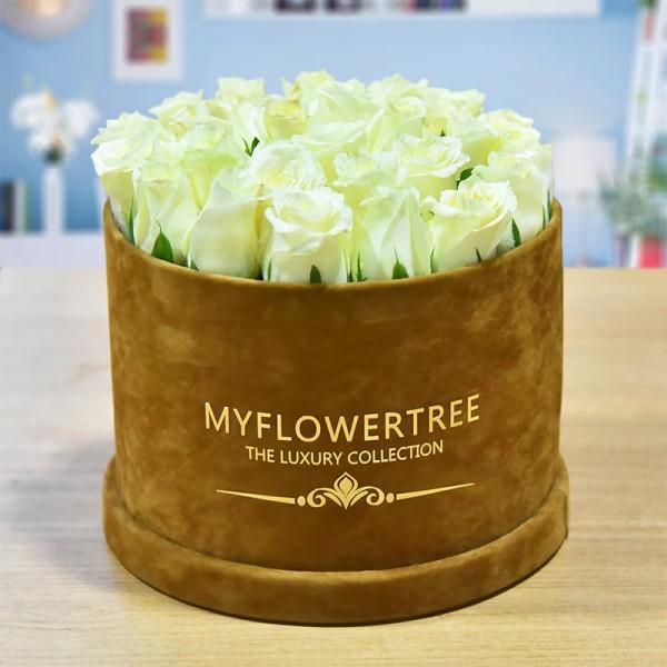 40 White Roses in a Brown Signature Velvet Box