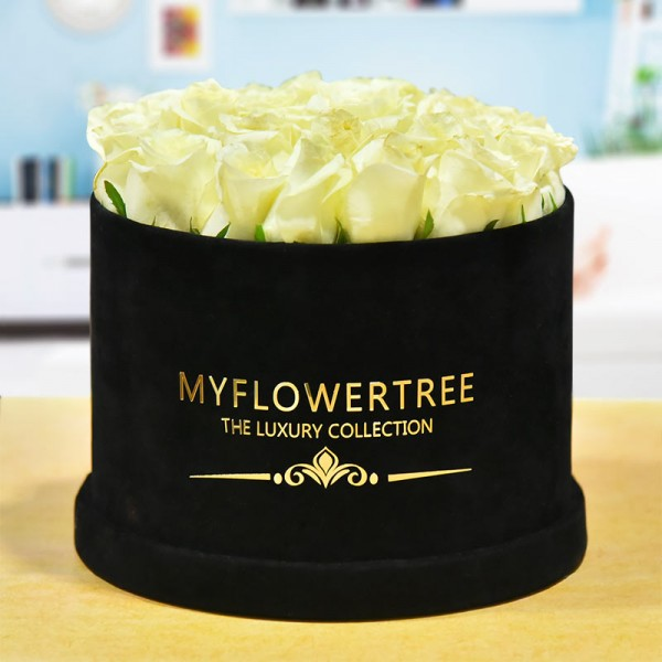 40 White Roses in a Black Signature Velvet Box