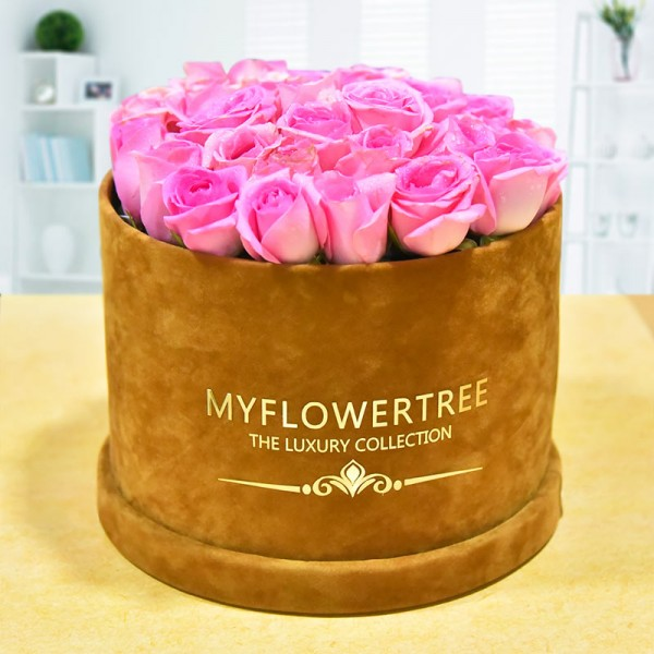 40 Pink Roses in a Brown Signature Velvet Box