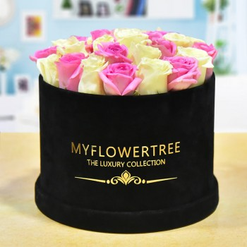40 Roses ( White and Pink) in a MFT Black Signature Velvet Box