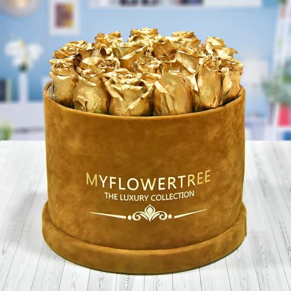 40 Golden Spray Roses in a Brown Signature Velvet Box