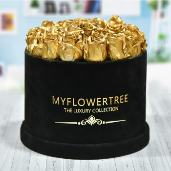 40 Golden Spray Roses in a Black Signature Velvet Box