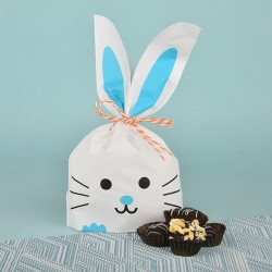 Handmade Assorted Chocolates in Kitty Gift Bag