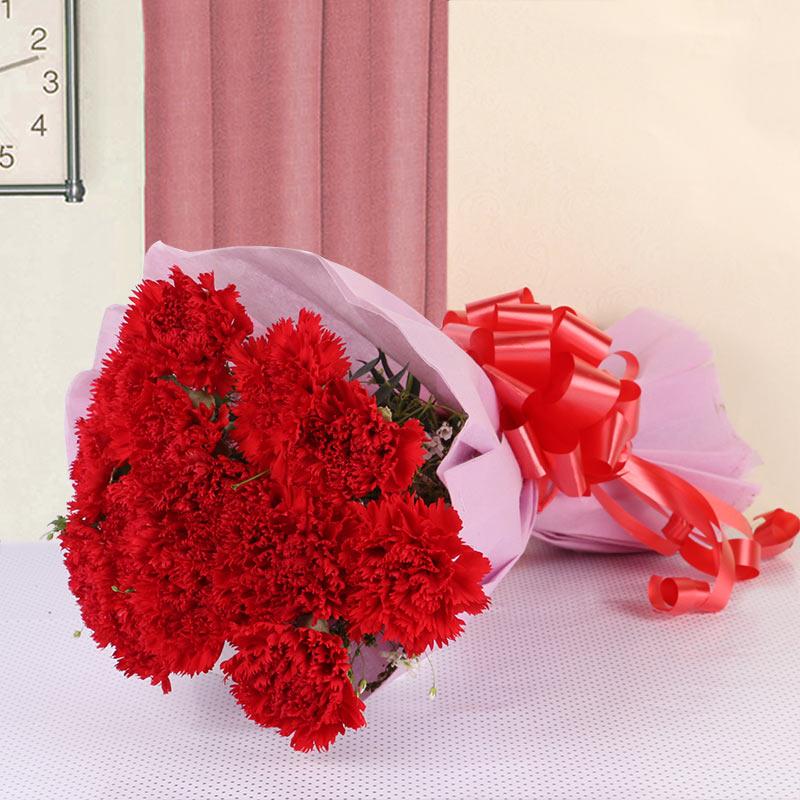 Carnations in Love