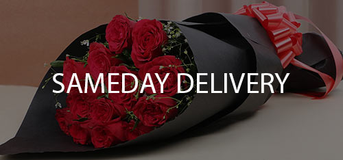 SameDay Delivery