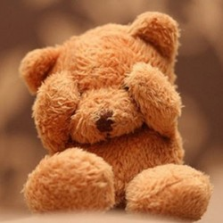 10th Feb Teddy Day