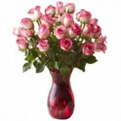 18 Pink Roses VVS