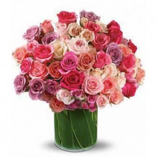Star Kissed Roses
