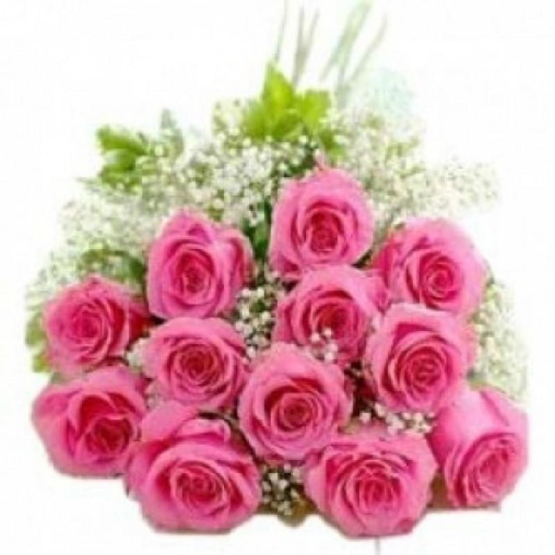 Pink Dozen