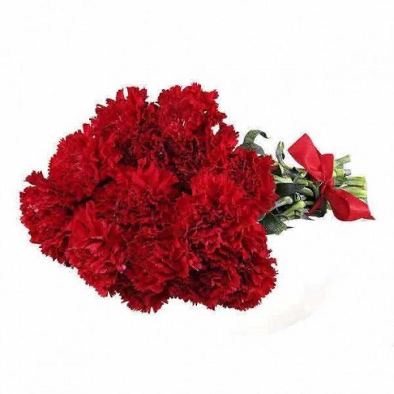 Dozen Carnations