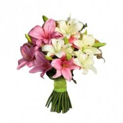 Fantastic Lilies