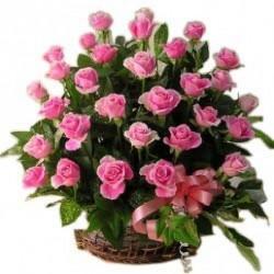 Pink Beautiful Basket