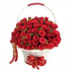 A Big  Hug of Roses