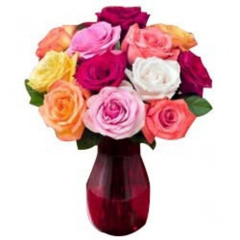 12 Colored Roses