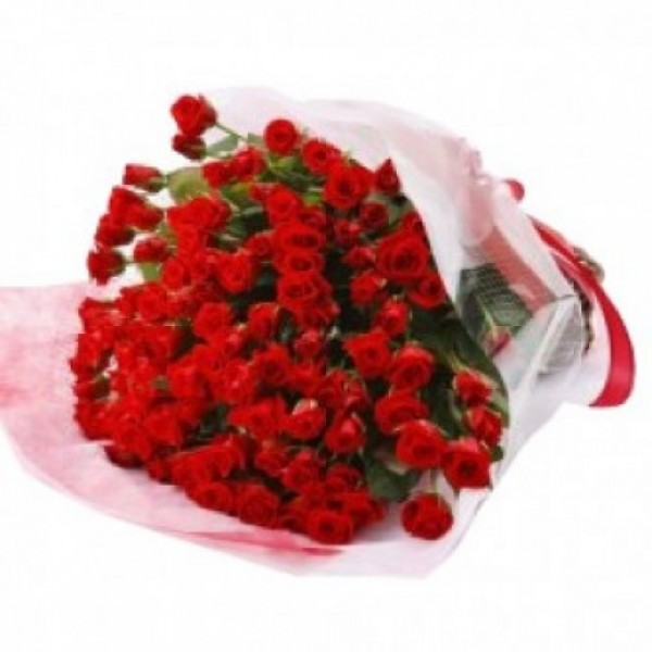Zeal of Roses