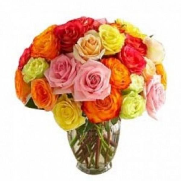 Blooming LS 30 Roses