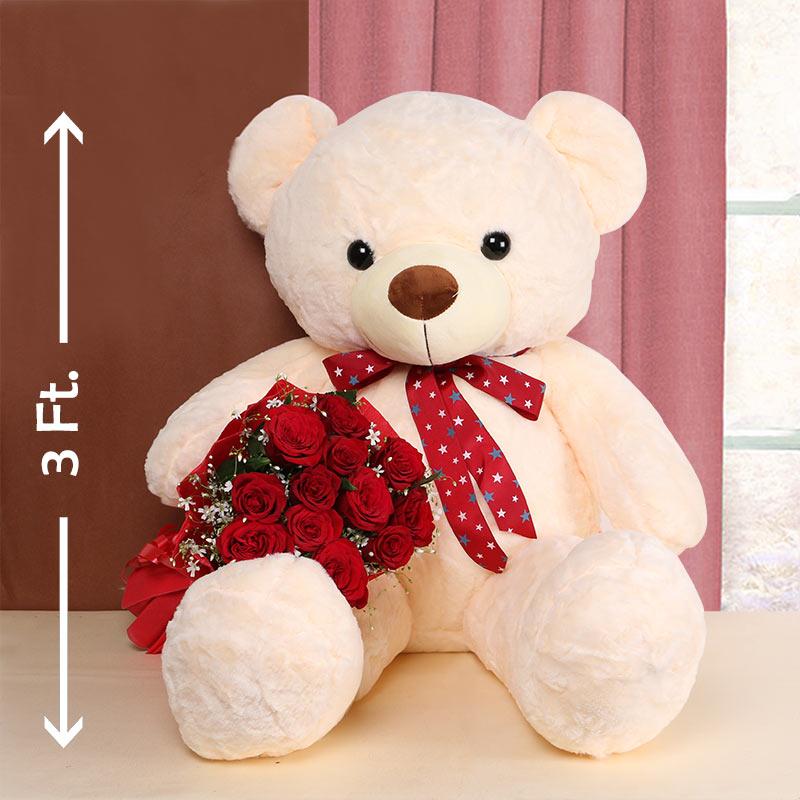 Teddy has Roses