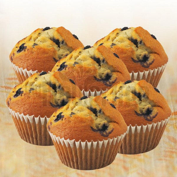 Set of 6 Blueberry Muffins