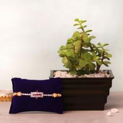 A Prosperous Rakhi Gift