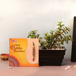 A Fruitful Rakhi Hamper