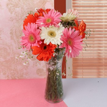 10 Assorted Gerberas in a Glass Vase