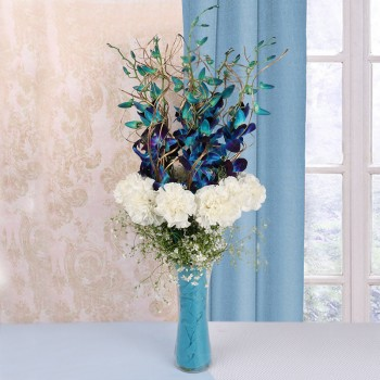 5 Blue Orchids with 12 White Carnations in a Glass Vase and Blue Paper