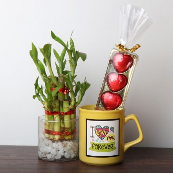 I Love You Printed Coffee Mug with Lucky Bamboo and 5 Pcs Heart Shape Chocolate