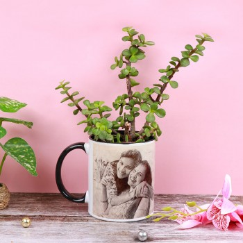 One Sketcth Art Personalised Mug with Jade Terrarium Plant