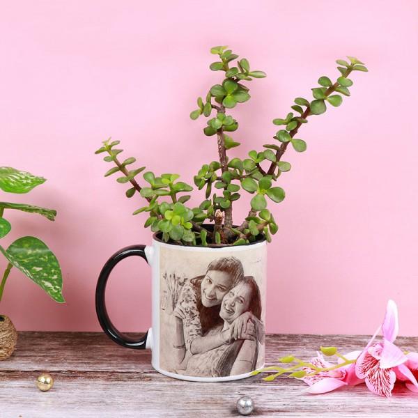 One Sketcth Art Personalised Mug with Jade Terrarium Plant