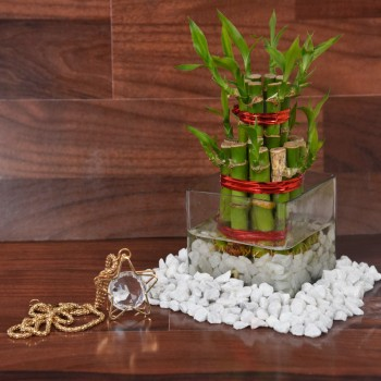 Designer Pendant with Lucky Bamboo