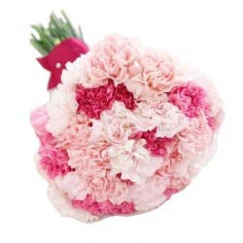 In Love Carnations