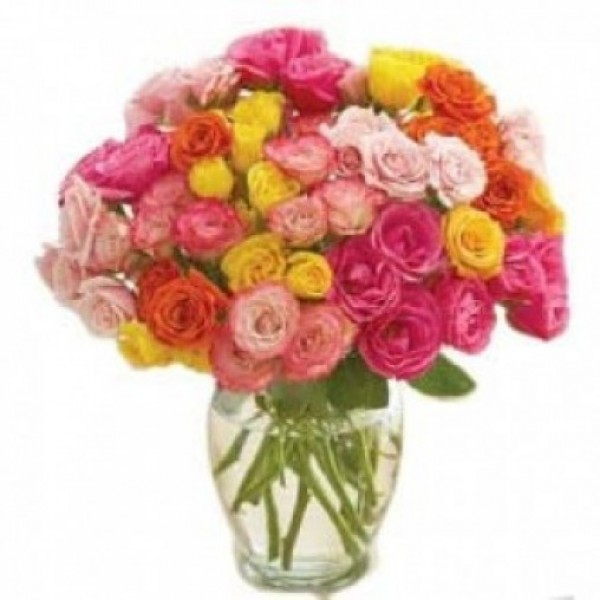 Multicolored Roses 50