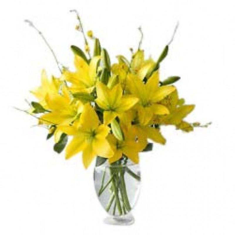 Yellow Lilies 8 XL