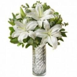 Star Lilies
