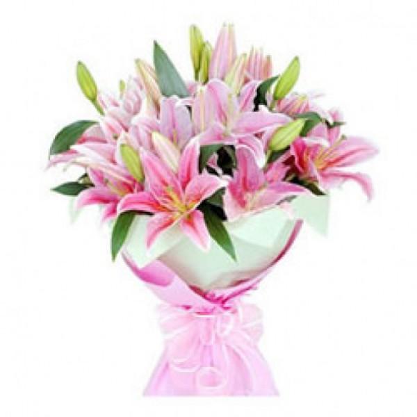 Romance of Lilies