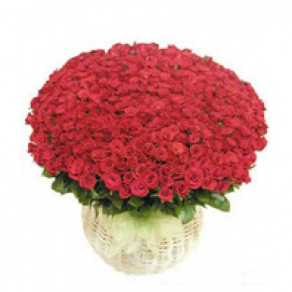 Special 100 Roses in Basket