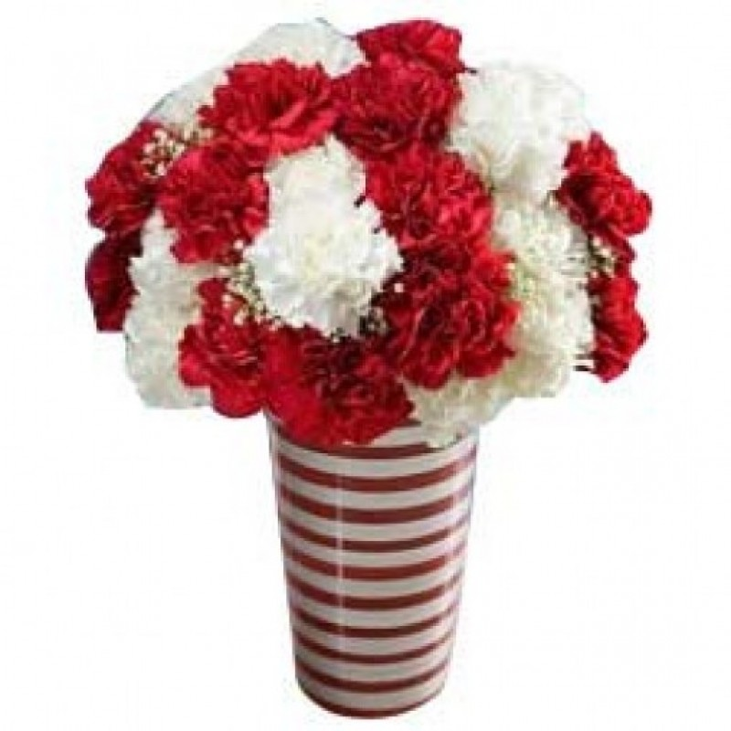 Holiday Carnations