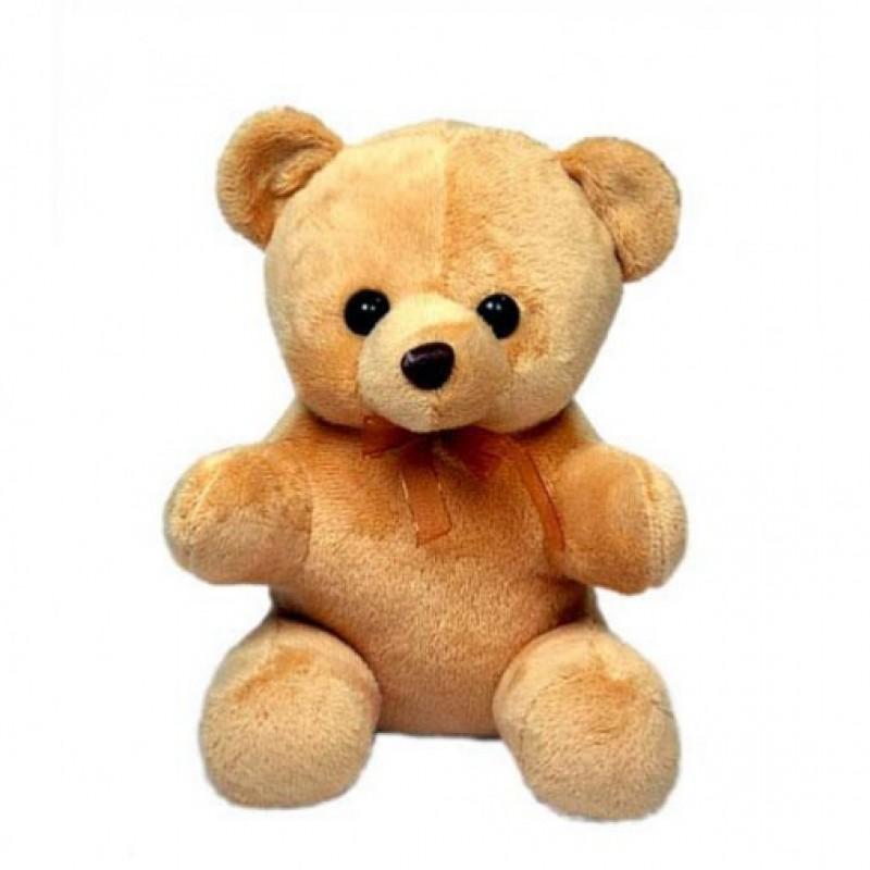 Teddy 6 Inches Tall