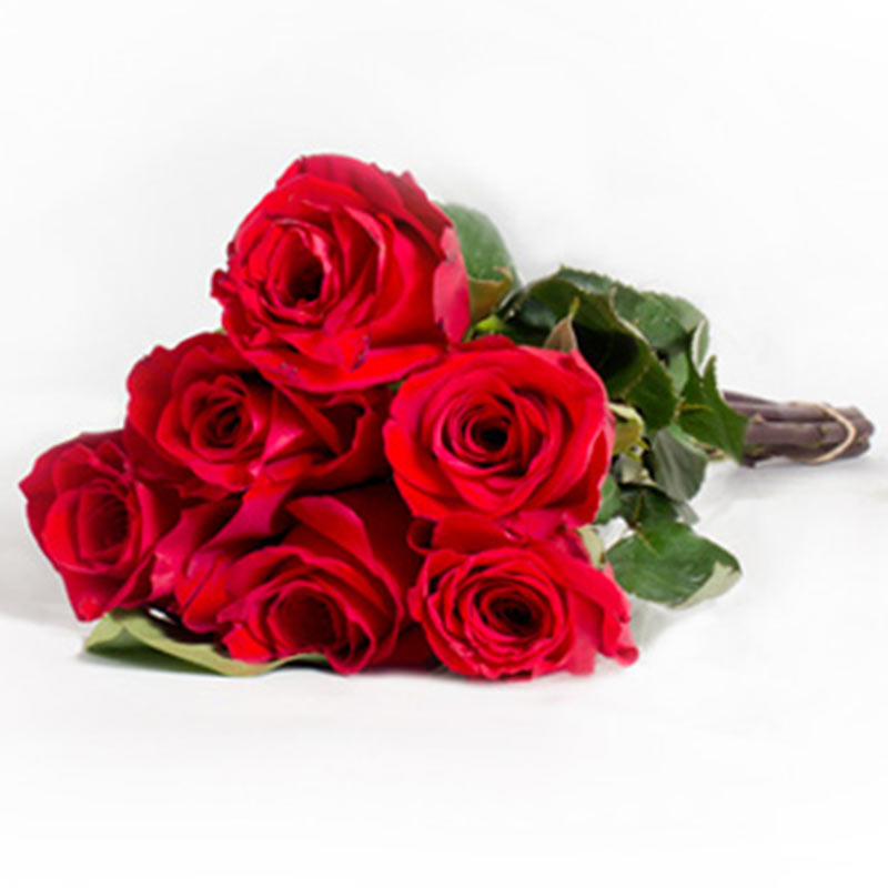 6 Red Roses Bouquet Online