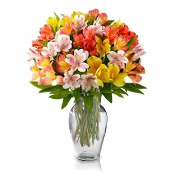 Alstroemeria Bouquet