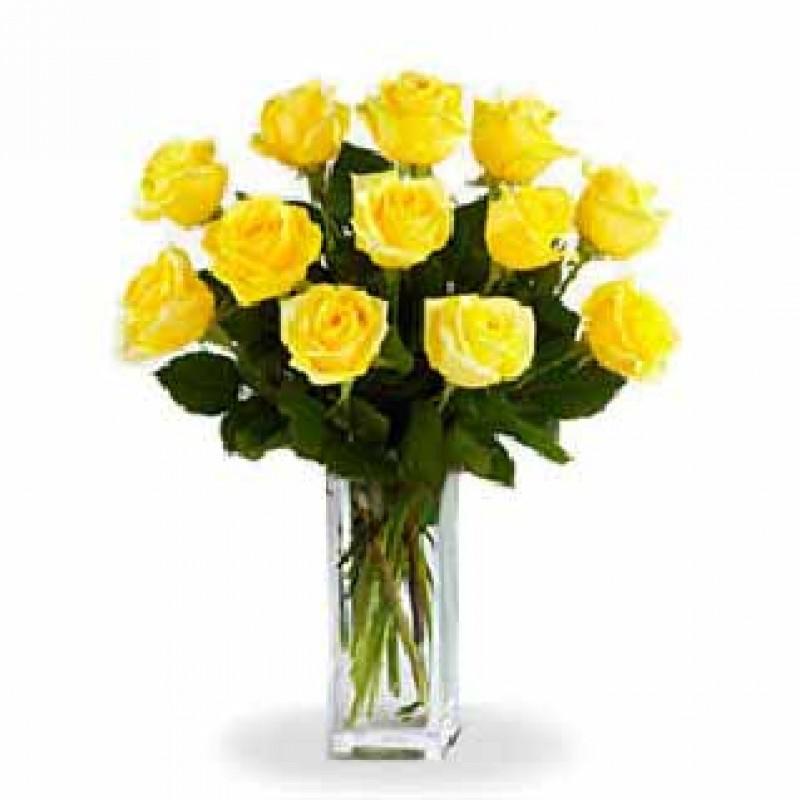 Dozen Yellow Roses