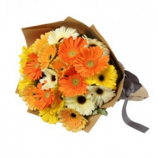 15 Mixed Gerberas wrapped in special Paper
