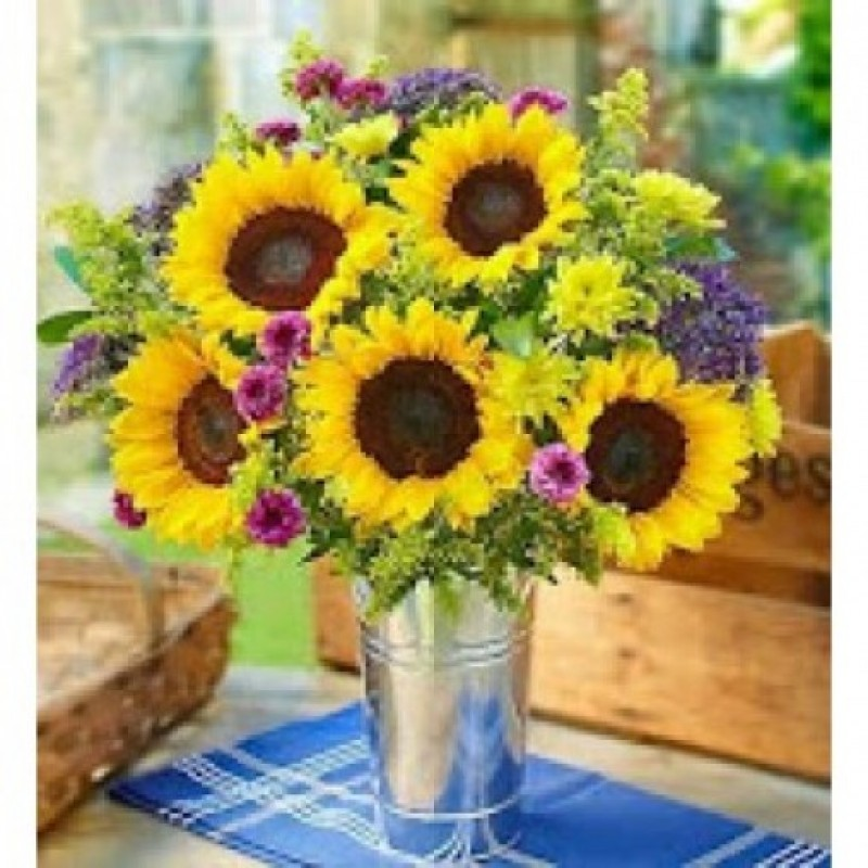 Fresh Sunflowers